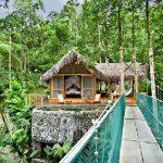 jaguar-canopy-suite-Pacuare